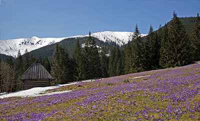 Resorts in Poland - Zakopane and surroundings